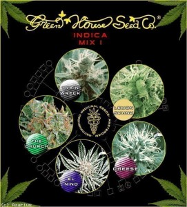 Indica Mix I - GREEN HOUSE SEEDS