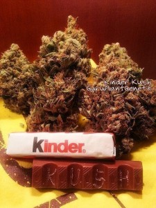Kinder Kush - Biological Seeds