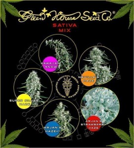 Sativa Mix - GREEN HOUSE SEEDS