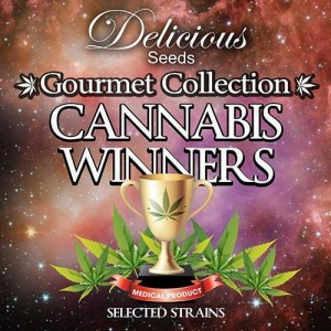 Gourmet Collection Cannabis Winners 2 - DELICIOUS SEEDS