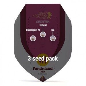 Feminized Mix 1+1 - ROYAL QUEEN SEEDS