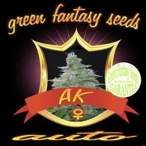 Auto AK - GREEN FANTASY SEEDS