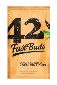 Original Auto Northern Lights - FASTBUDS