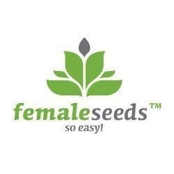 Fast Nevills - FEMALE SEEDS