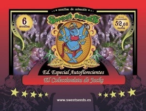 Autoflowering Collector Jacks Edition - SWEET SEEDS