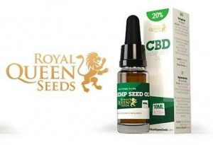 CBD Hemp Seed Oil 20% ROYAL QUEEN SEEDS