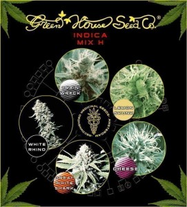 Indica Mix H - GREEN HOUSE SEEDS