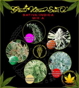 Sativa/Indica Mix A - GREEN HOUSE SEEDS