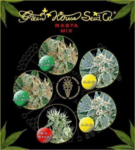 Rasta Mix - GREEN HOUSE SEEDS