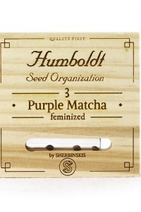 Purple Match - Humboldt Seeds