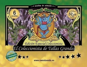 Autoflowering Collector Tallas Grandes Edition - SWEET SEEDS