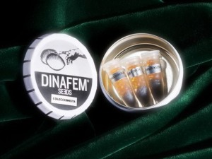 Collectors Pack Nº 22 - DINAFEM